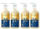 Combo 2 Kit Salvatore Blue Gold 4X1 500ml